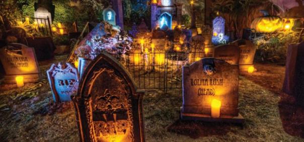 Comment décorer son jardin pour Halloween?