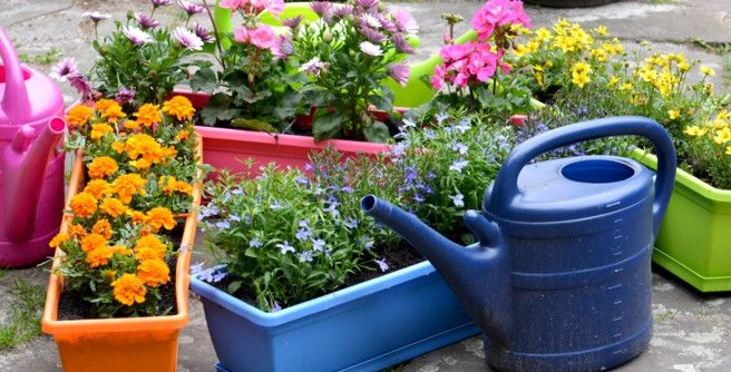 Personnaliser sa jardinière selon ses envies